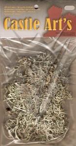 Lichene naturale precolorato verde chiaro - 15gr