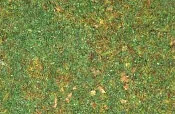 Erbetta statica con rocce - 20gr