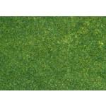 Manto erboso verde scuro - 24x15cm