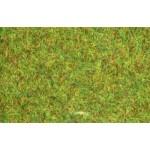 Erbetta statica verde - 20gr